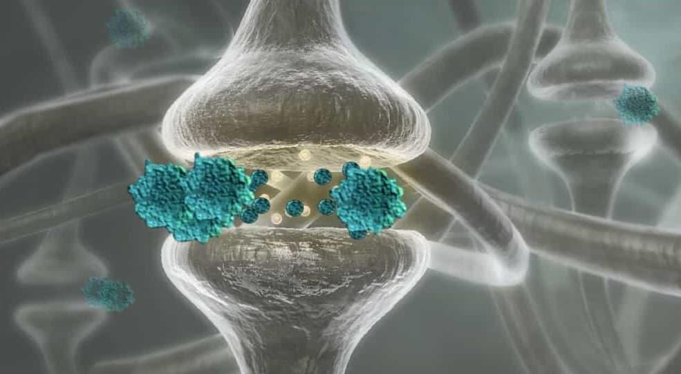 Neurones blaves