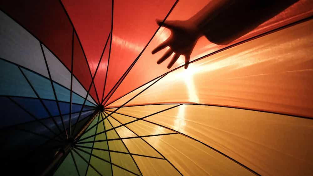 Mà sota paraigües multicolor